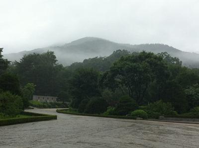 광릉수목원 뒤쪽의 산에 안개구름이 덮여있다.